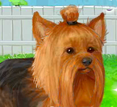 juego-perrito-yorkshire