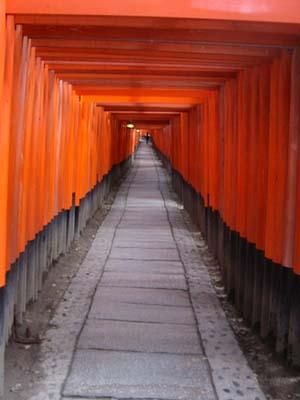 torii tori