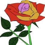 Juego de pintar rosas