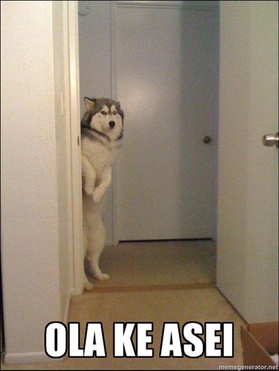 ola ke ase perro