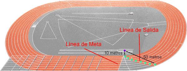 area velocidad atletismo 800 metros
