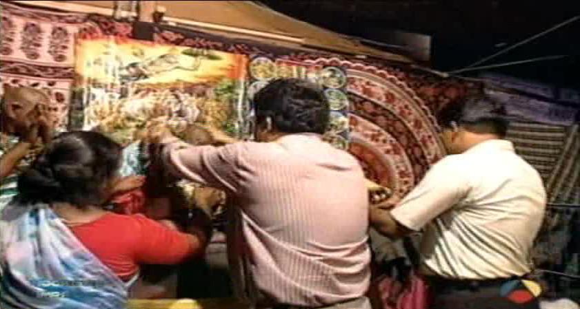 india microencefalia