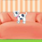 Adoptar, cuidar y enseñar a perros y gatos
