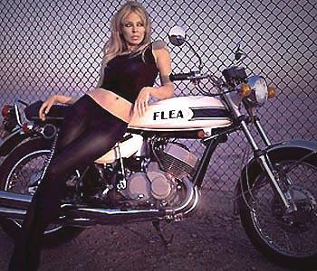 kylie minogue moto