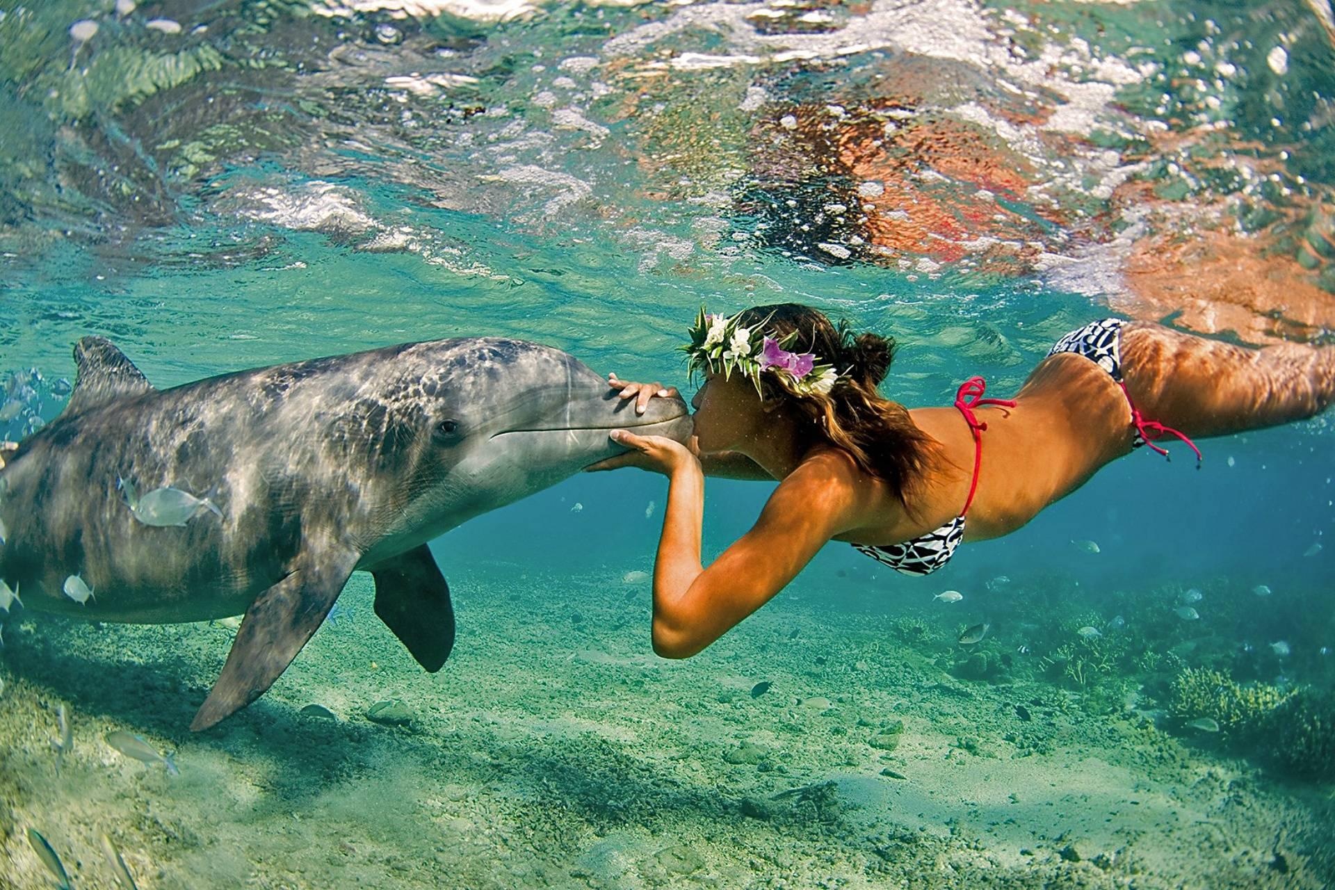 Chica besando delfin costas bali
