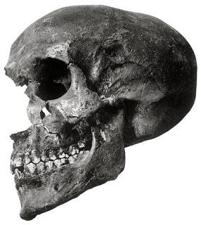 KV 55 tumba calavera