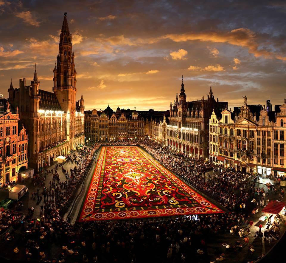 alfombra flores belgica bruselas
