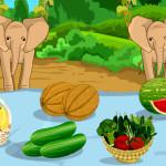Juego de comida en el zoológico