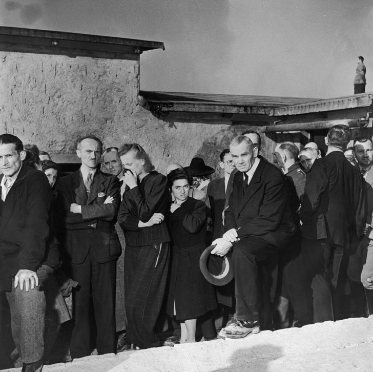 Buchenwald luto