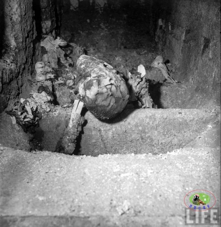 Buchenwald muerte