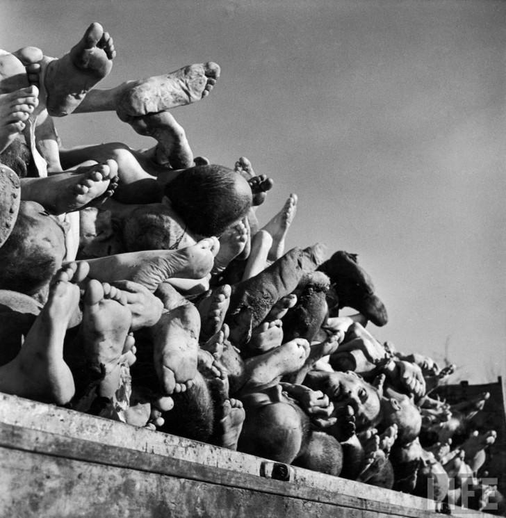 cadaveres muertos nazis