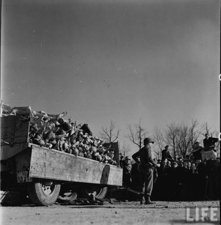 camion cuerpos muertos nazis
