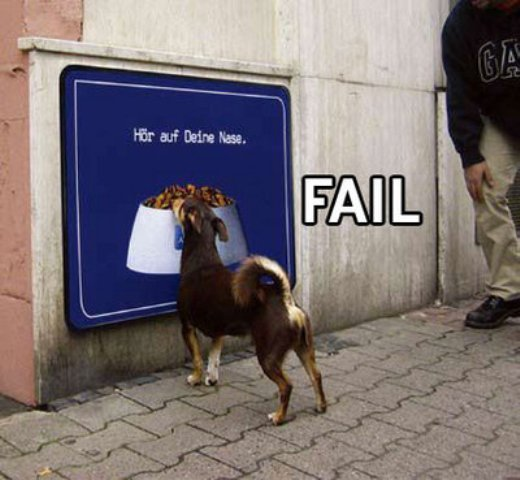 fail comida perro
