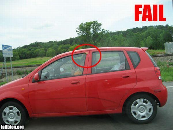 fail pelo puerta coche