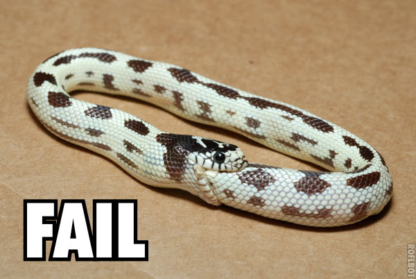 fail serpiente