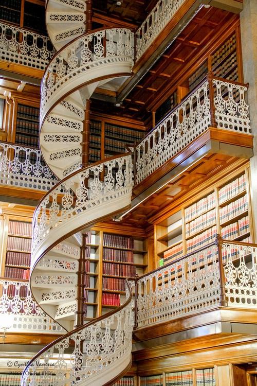 libreria florencia italia