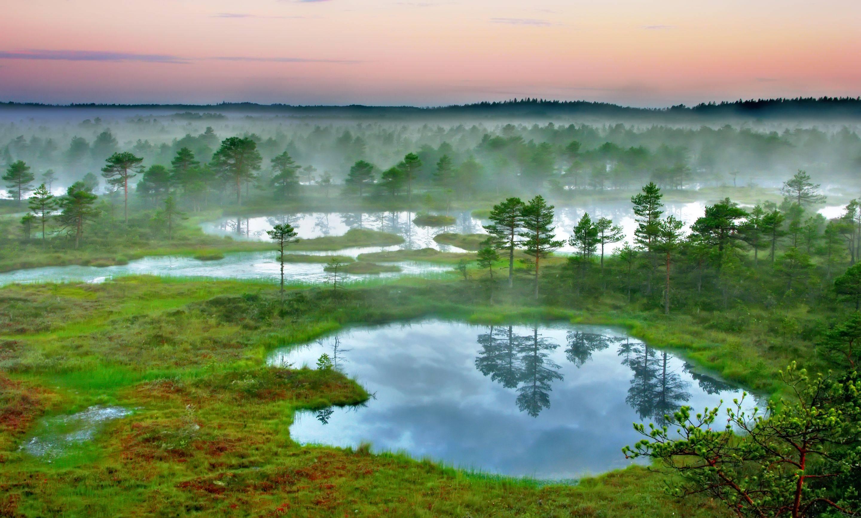 pantanos Estonia
