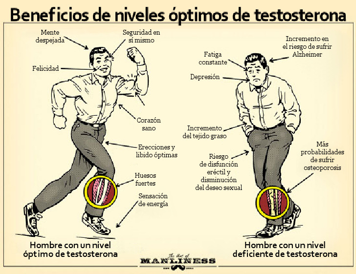 beneficios testosterona