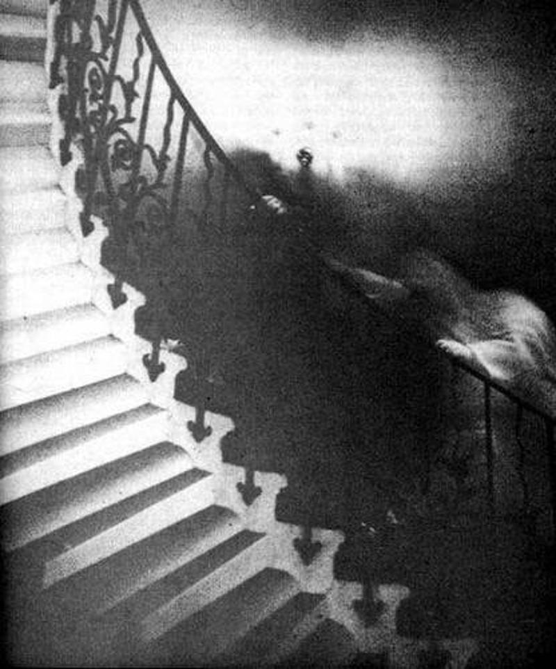 fantasma escalera tulipan