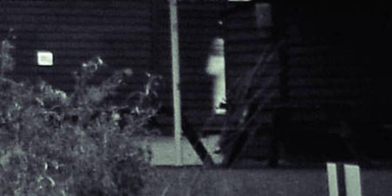 fantasma granja