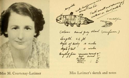 Marjorie Courtenay-Latimer celacanto