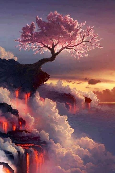 arbol lava precipicio nubes