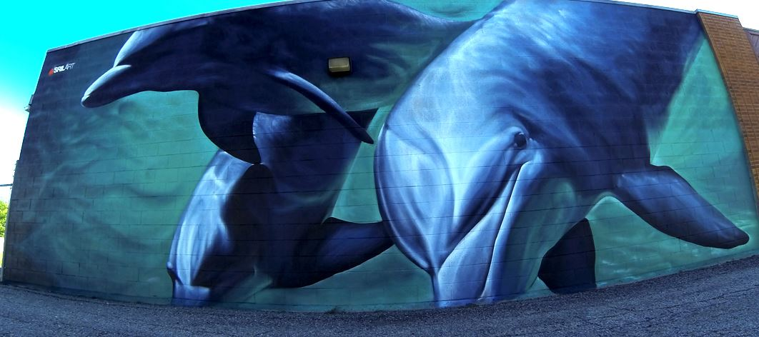 delfines pintados spray graffiti