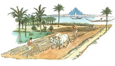 agricultura sumeria