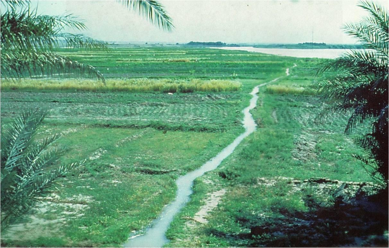 canal irrigacion sumerio cerca eufrates