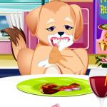 Juego consulta dentista de perros