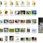 Reparar vista previa de imágenes o iconos en Windows