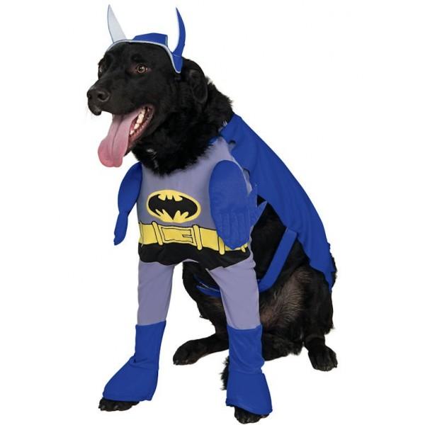 5979766145b Juego de comprar ropa para el perro y la chica | Juegos