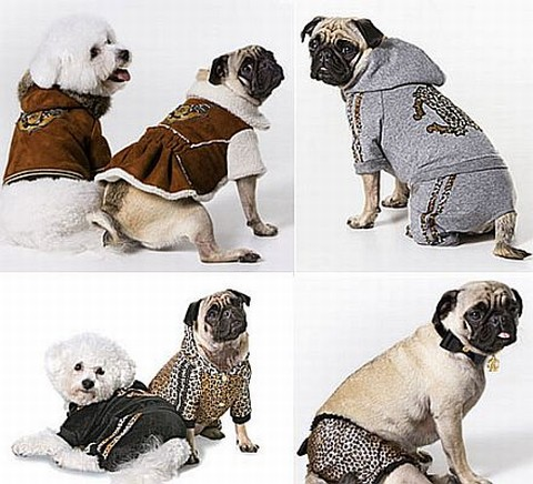 ropa animales
