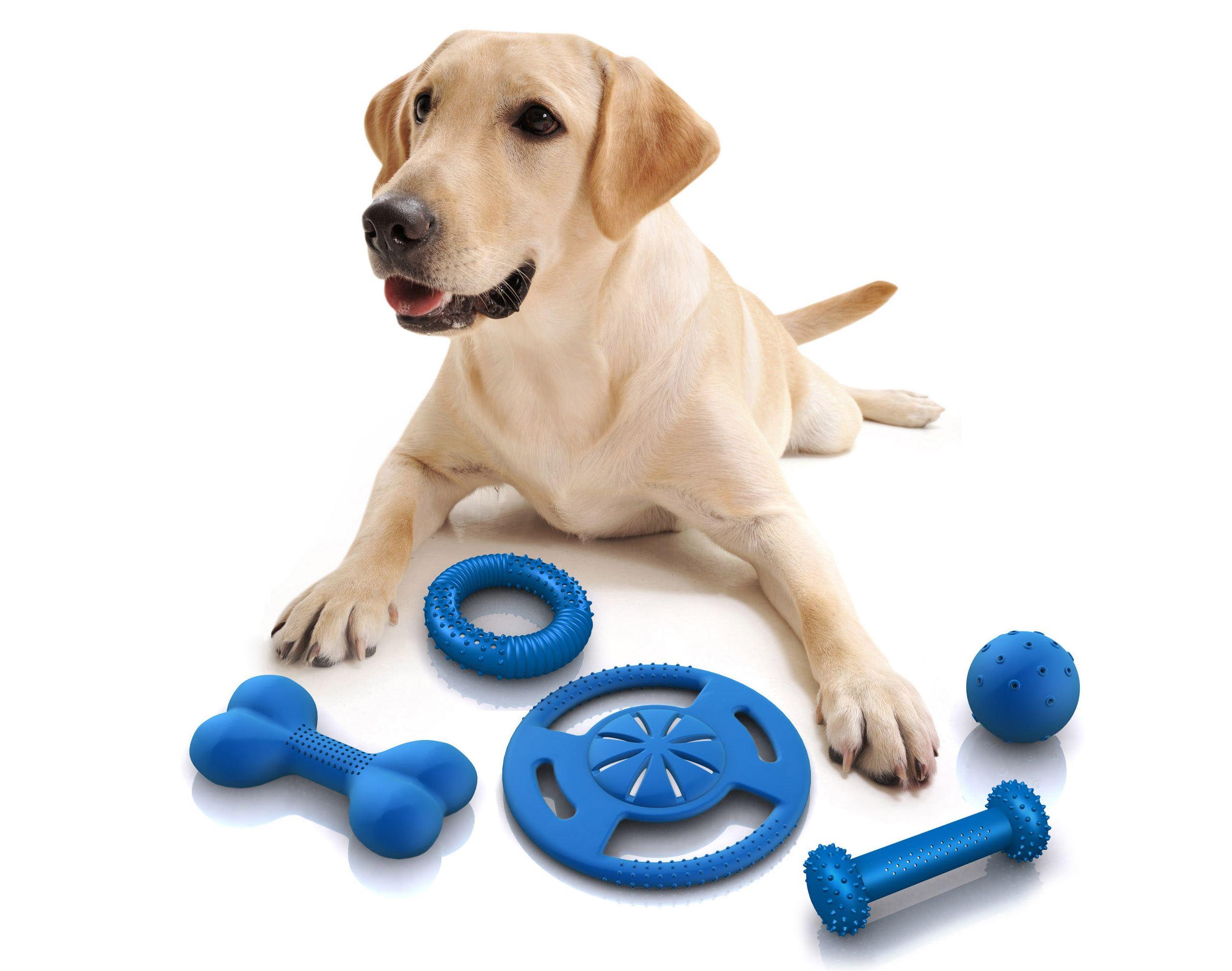 juguetes mascotas