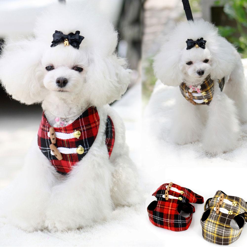 moda perros