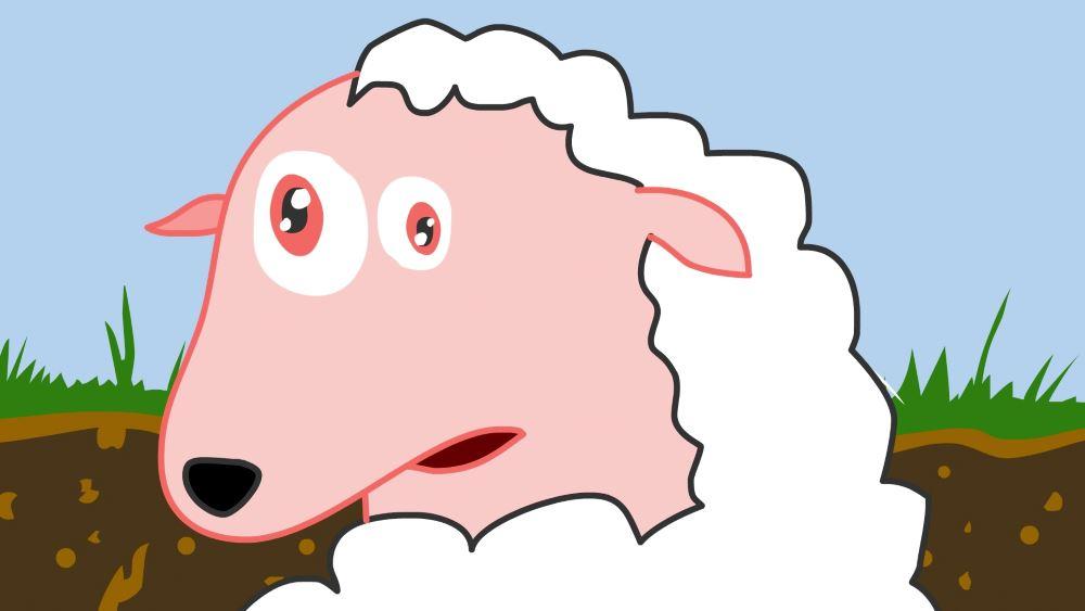 En la mente de una oveja 03