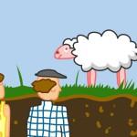 En la mente de una oveja