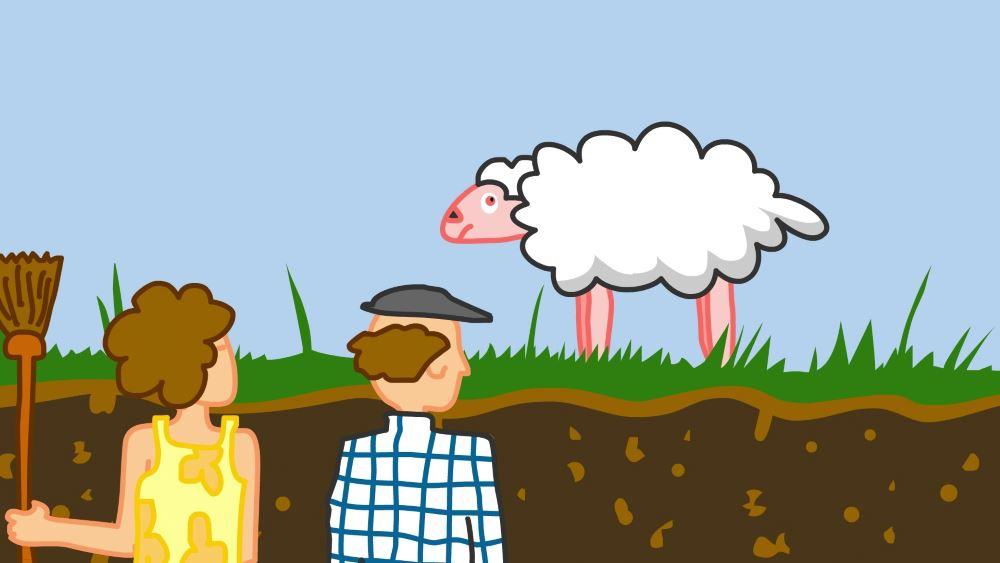En la mente de una oveja 05