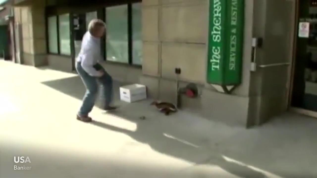 animales rescatados patos
