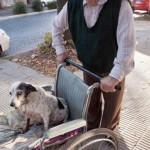 Sacando de paseo a su perra paralítica
