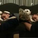 Perro acariciando a su amo