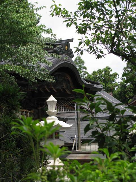 Koya-san templo japon