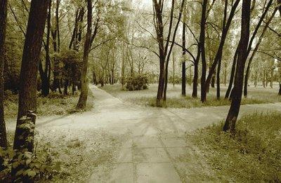 encrucijada caminos