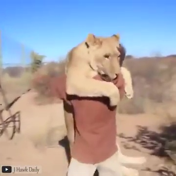 animales abrazando humanos 02