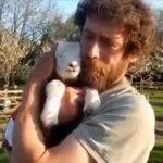 Animales abrazando a humanos