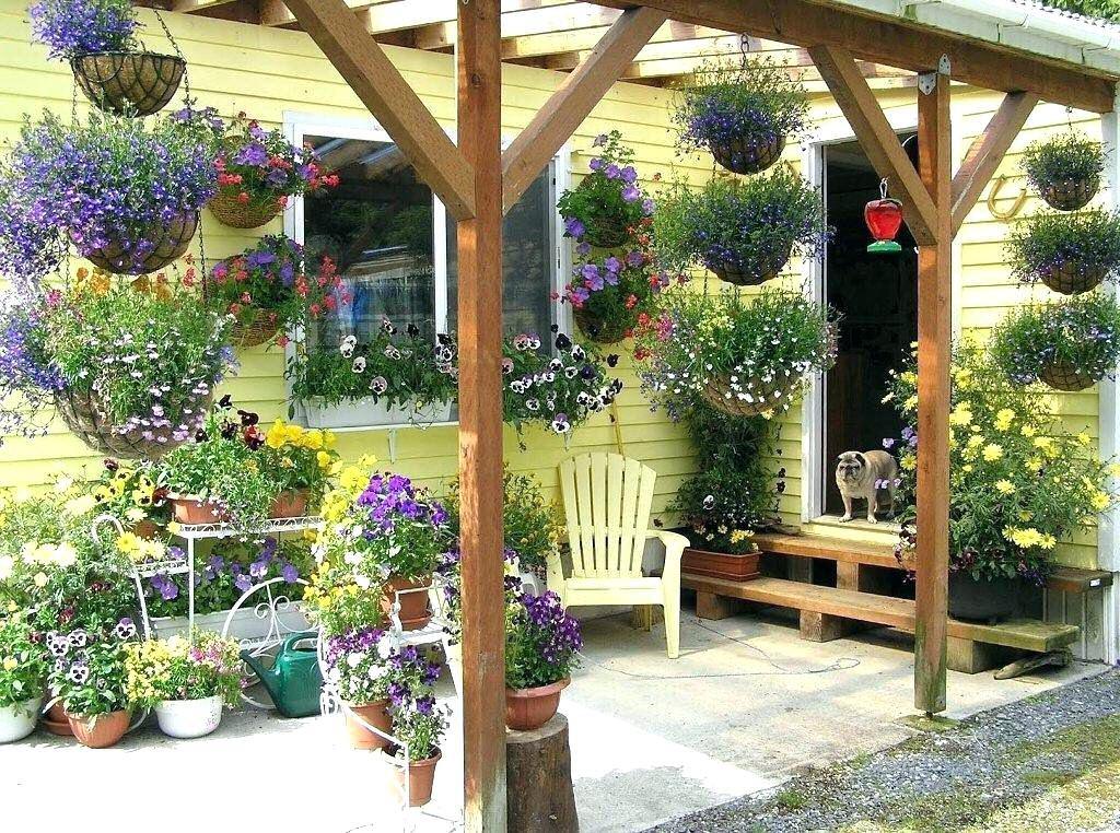 decoracion exterior plantas