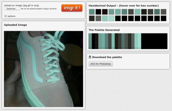 zapatilla constancia parcial color