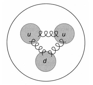 gluones quarks