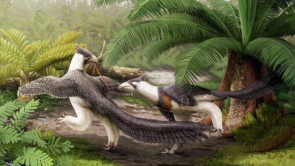 dinosaurios seleccion natural sexual
