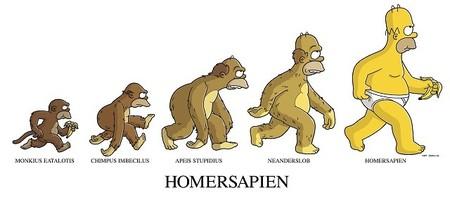 evolucion animales